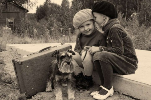 two-young-girls-with-dog-at-bus-stop-picture-id464598295