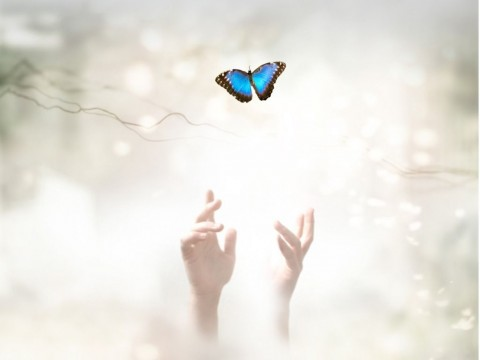into-the-light-metaphorical-ethereal-background-soul-release-and-picture-id893701096-1