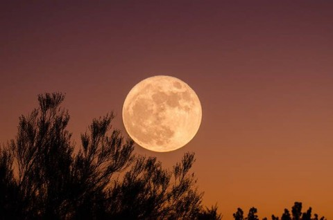 gifts-of-the-full-moon_orig