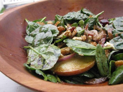 harvest-salad