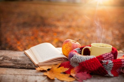 tea-mug-with-warm-scarf-open-book-and-apple-picture-id846775222-1