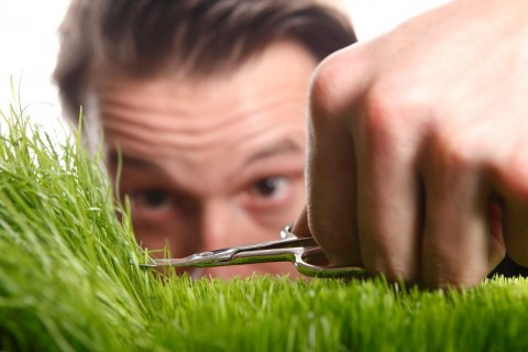 young-man-cuts-english-lawn-picture-id509053151