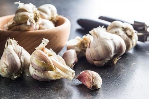 fresh-healthy-garlic-picture-id1052335740