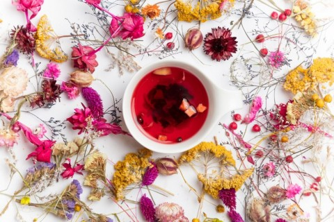 cup-of-organic-fruit-tea-and-herbs-picture-id807111196