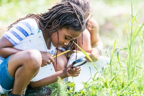 ecology children