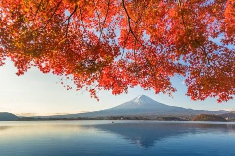 fuji-mountain-and-kawaguchiko-lake-in-morning-autumn-seasons-fuji-at-picture-id932561100
