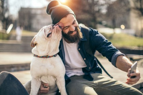 man-and-dog-in-the-park-picture-id934108632