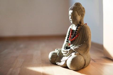buddha-wisdom-and-piece-picture-id922603648