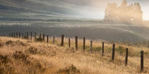 misty-valley-at-glenbow-ranch-provincial-park-picture-id168259069