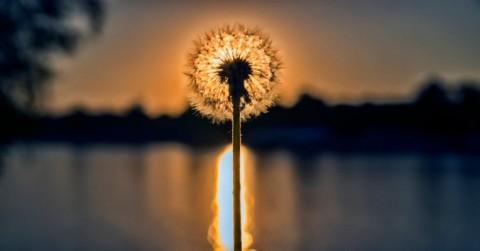 Blog-shine-awareness_ss