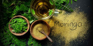 Meet Moringa: What Is This Transformative Superfood Good For?