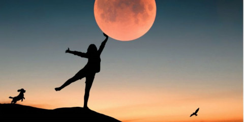 touch-the-moon-woman-and-dog-bloody-moon-moon-picture-id1266339955