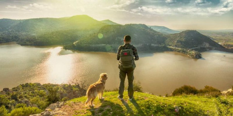 trekking-with-the-dog-on-mountains-picture-id940258986